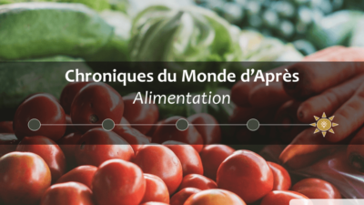Perspectives 2050, Transition alimentaire & Score