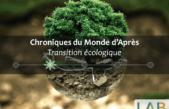 Réduction des émissions carbone, Régulation économique & Bien-être collectif