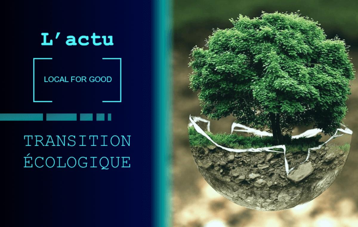 Coût, Adaptation & Humanité