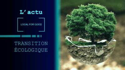 Empreinte carbone, Transition écologique & Publicité